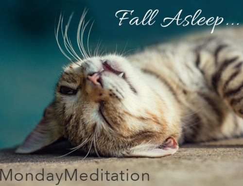 Finding Sleep #MondayMeditation MP3